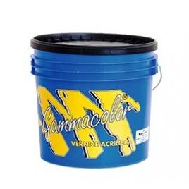 Vernice acrilica protettiva grigia kg 20 gammacolor