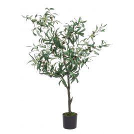Bizzotto pianta di ulivo con vaso 492 foglie altezza 120cm